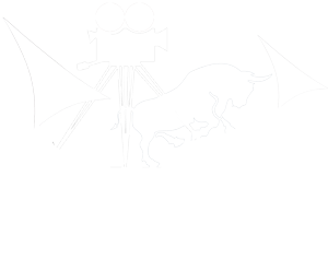 Bull & Ship Films Logo